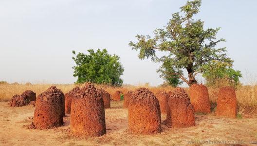 Kamienne kręgi Senegambii